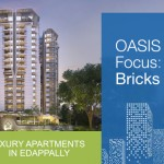 OASIS Product Focus: on AAC Concrete Bricks